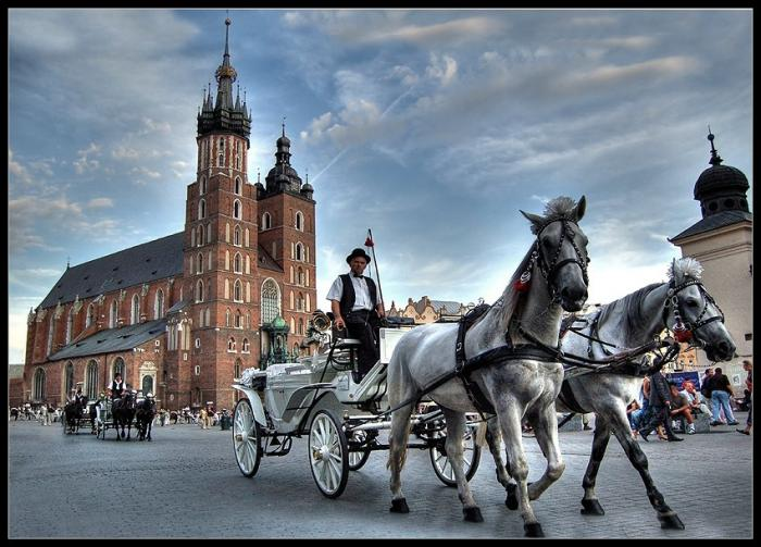 Krakow kosciol mariacki konie